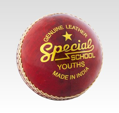 Junior Cricket Balls