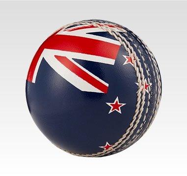 Novelty Cricket Balls