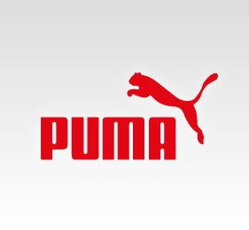 Puma Cricket Shoes