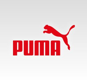 Puma Training