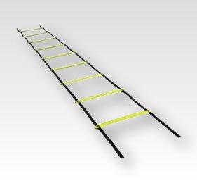 Training Agility Ladders