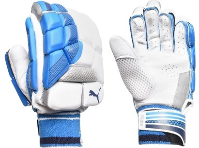 Puma Evo 2 Cricket Batting Gloves