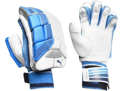 Puma Evo 4 Cricket Batting Gloves