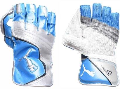 Puma Evo 2 Unisex Cricket Gloves