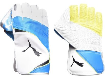 Puma Evo 3 Cricket Wicket Keeping Gloves