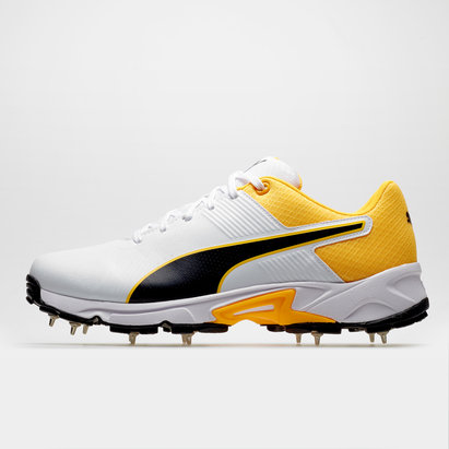 Puma 19.2 Cricket Spikes Mens