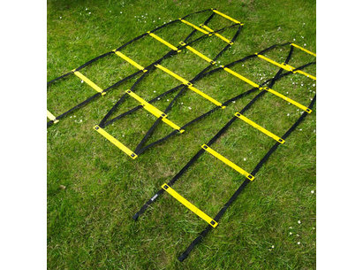 Mitre Training Agility Ladder