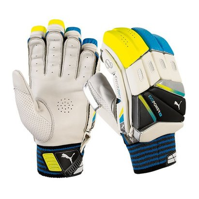 Puma 2016 evoPower3 Cricket Batting Gloves