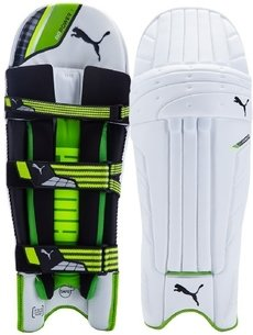 Puma 2017 evoPower 1 Junior Cricket Batting Pads