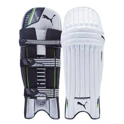 Puma 2017 evoFlex 2 Cricket Batting Pads