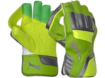 Puma evoPower 2 Junior Wicket Keeping Gloves