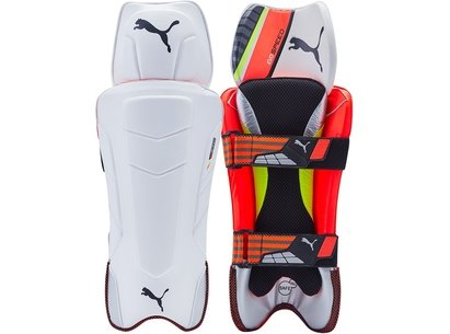 Puma evoSpeed FXT Junior Wicket Keeping Pads
