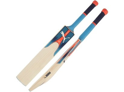 Puma 2018 EvoPower 1Y Junior Cricket Bat