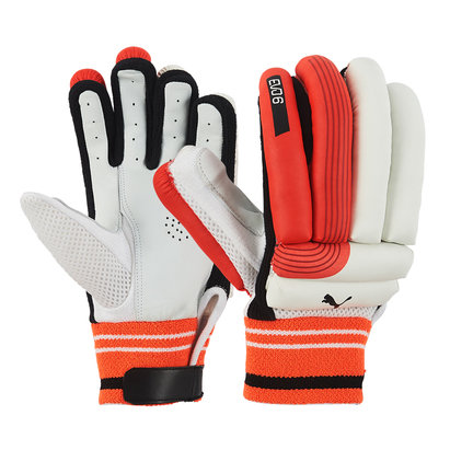 Puma Evo 6 Cricket Batting Gloves