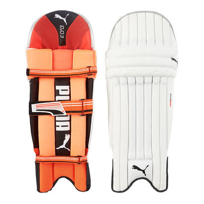 Puma Evo 3 TW Cricket Batting Pads