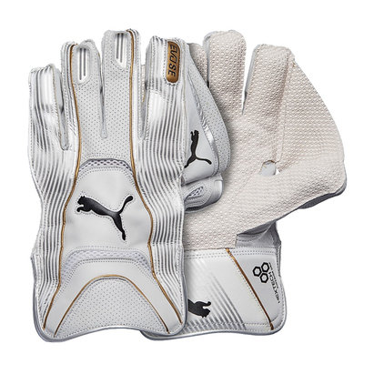 Puma 2018 Evo LE Cricket Wicket Keeping Gloves