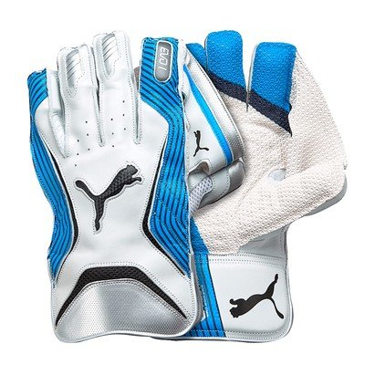 Puma 2018 Evo 1 Cricket Wicket Keeping Gloves