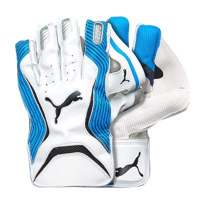 Puma 2018 Evo 2 Cricket Wicket Keeping Gloves