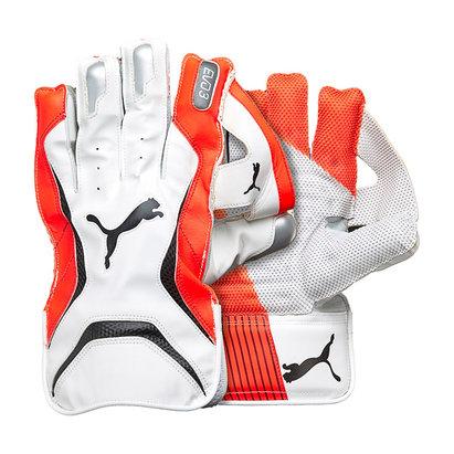 Puma 2018 Evo 3 Cricket Wicket Keeping Gloves
