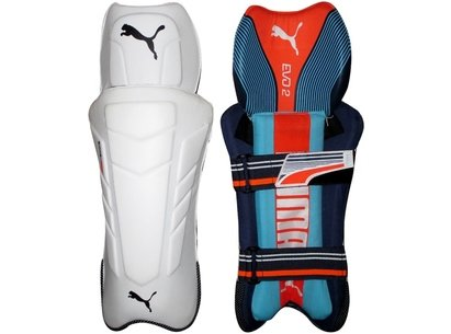 Puma 2018 Evo 2 Cricket Wicket Keeping Pads