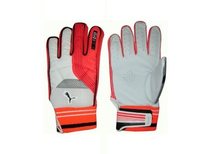 Puma 2018 Cricket Evo Indoor Batting Gloves