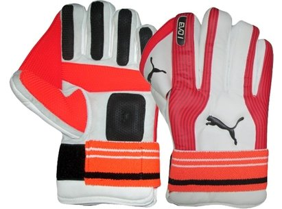 Puma 2018 Cricket Evo Indoor Wicket Keeping Gloves