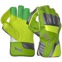 evoPower 2 Junior Wicket Keeping Gloves