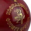 County Special Cricket Ball