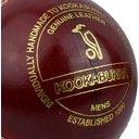 County Star Cricket Ball