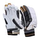 2018 Evo SE Cricket Batting Gloves