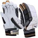 Evo SE Cricket Batting Gloves