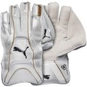 Evo LE Cricket Wicket Keeping Gloves