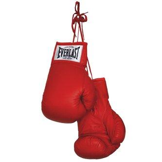 Autograph Boxing Gloves