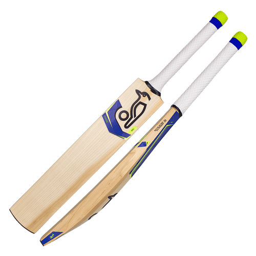 2019 Charge 4.0 Cricket Bat