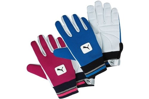 Cotton Padded Wicket Keeping Inner Gloves