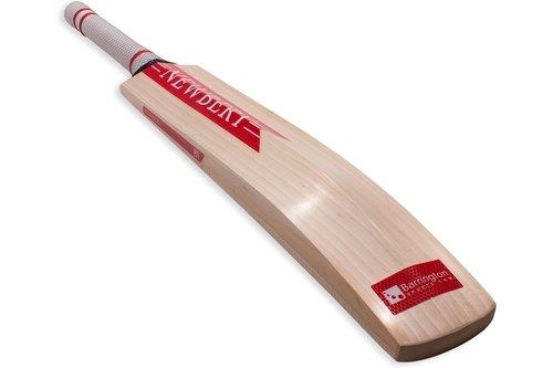 2018 B1 Junior Cricket Bat
