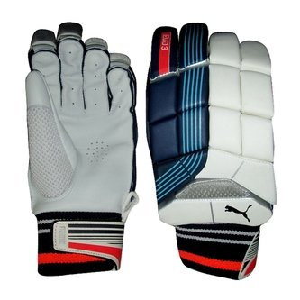 2018 Evo 3 Cricket Batting Gloves